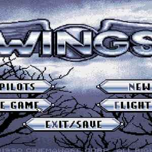 Wings retro game